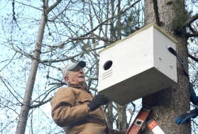 2016-11-28-owl-box2-installation