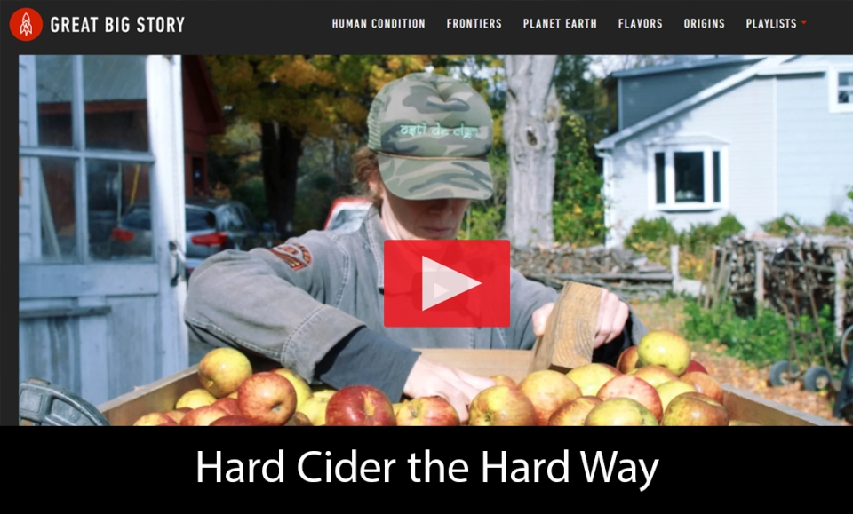 cider-apple-have-terroir